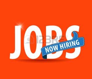 Data Entry Operators Required - Data Entry Home Jobs