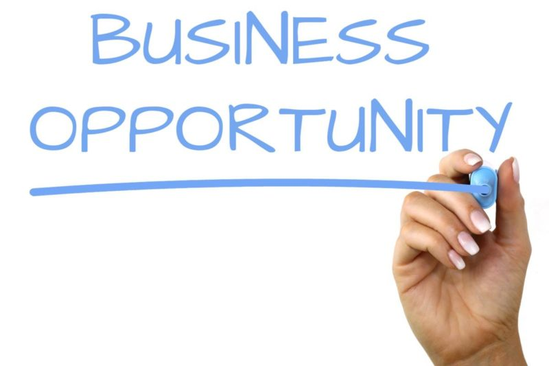 Need Business Partner For Our Current Business