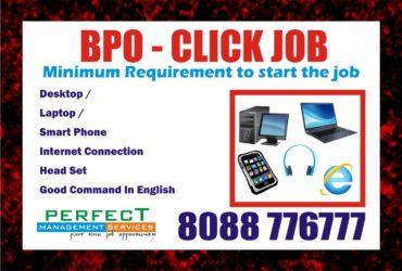Mobile Survey Job