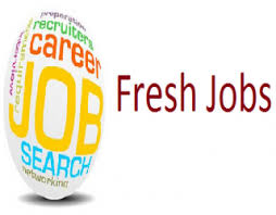 Noida Fresher Job At Vivo, Oppo, IBM, HCL, Ashok leland, Bajaj, Tata